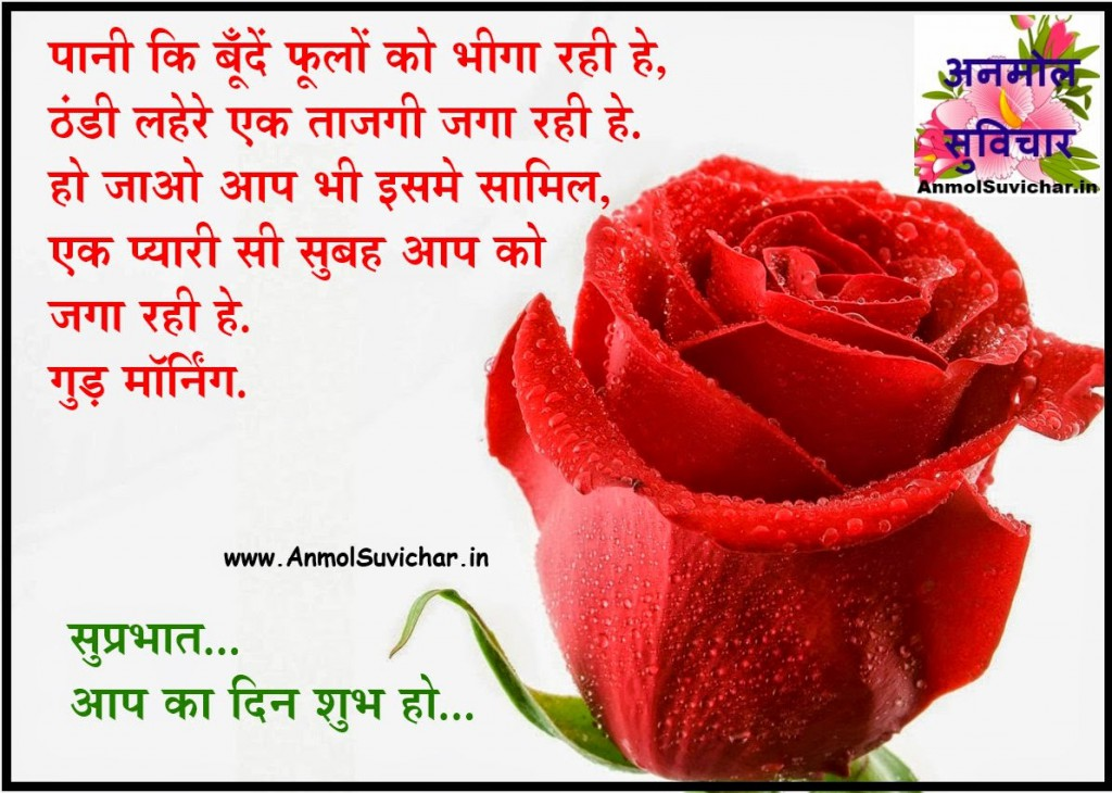 Good Morning Wishes In Hindi Picture